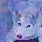 Water Color Husky by AspenWillow
