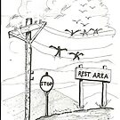 BIRD REST AREA by Charles Adams