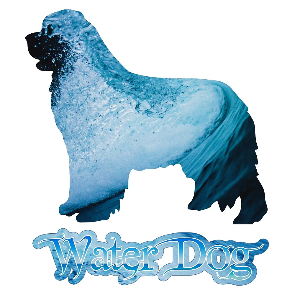 Water Dog by Christine Mullis