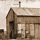 Rusting Shed by Eve Parry