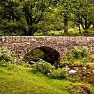 Norsworthy Bridge, Dartmoor Nationalpark von Jay Lethbridge