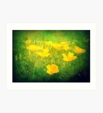 Field of Golden Poppies Art Print