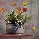 Potted Tulips by Shelly Harris