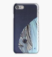 Lib 734 iPhone Case/Skin