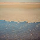 Lake Eyre 6 by Richard  Windeyer