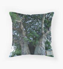 Grove Place Baobab Tree Throw Pillow