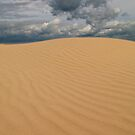 Sand Dunes @ Sandy Point by liza1880