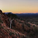 Ghost Gum over Ghost Gum Flats by Paul Moore