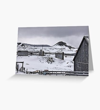Beauty of the grey Greeting Card