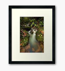 Mclarens Enchanted Drift Framed Print