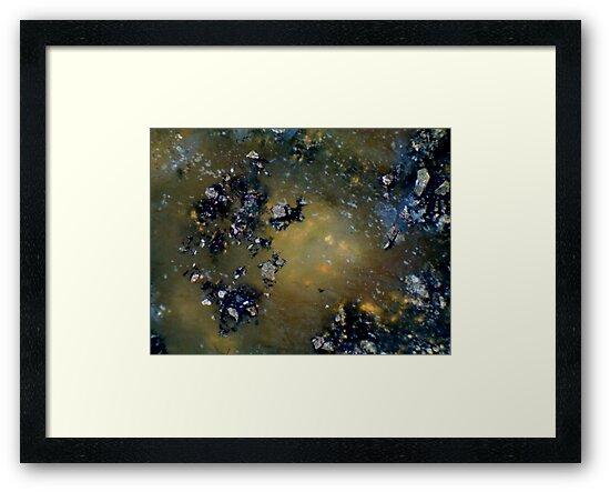 Asteroid Field by Stephanie Bateman-Graham