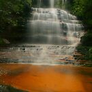 Junction Falls .. golden sands by Michael Matthews