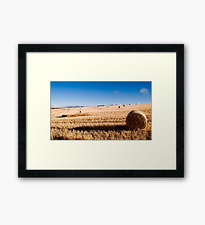 Hay Bale Just After Dawn Framed Print