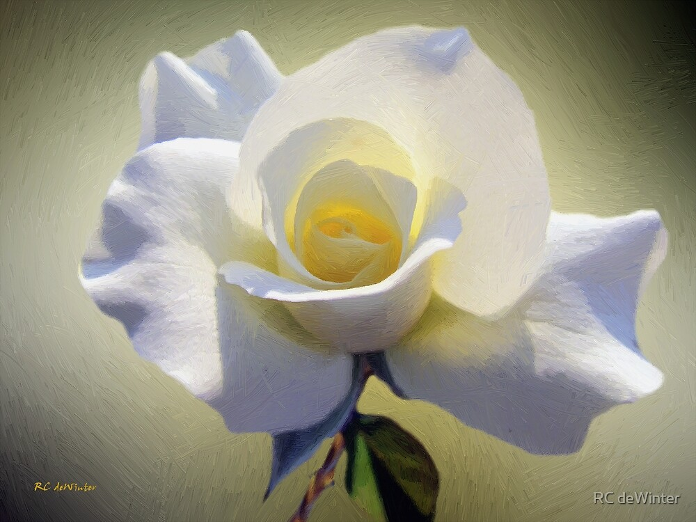 Heart of Gold by RC deWinter