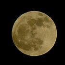 Goodnight Moon by milwaukelly