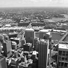 Sydney Panorama by Laurel Talabere