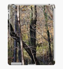 Trees Tall and Valley iPad Case/Skin