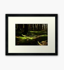 Under the Greenwood Trees Framed Print