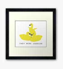 Baby geese - goslings! They were juggled! Framed Print