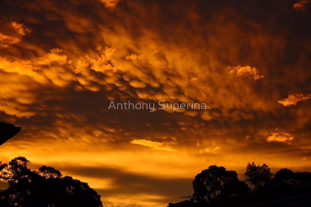 Urban Sunset by Anthony Superina