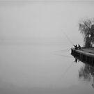 fishing by Anastasesh