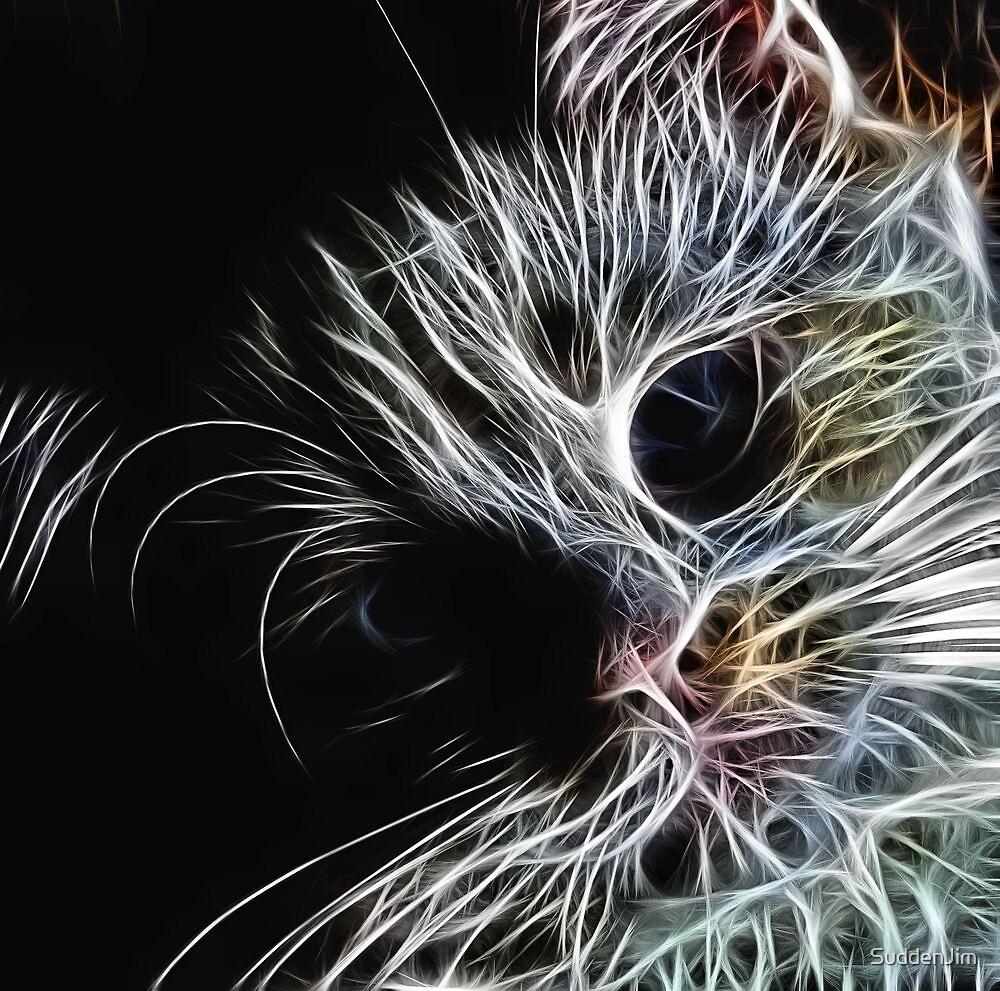 Whiskas by SuddenJim