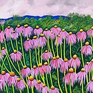 Echinacea Afternoon by Barbara  Strand