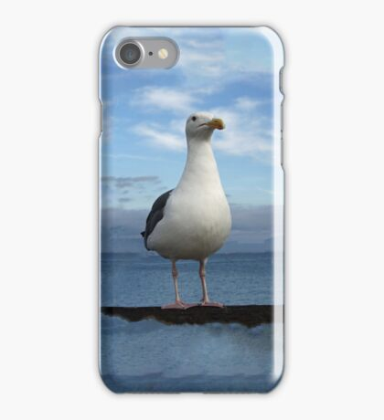 Admiral Seagull iPhone Case/Skin