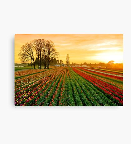 Dusk At The Wooden Shoe Canvas Print