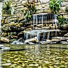 Garden Waterfall by Robin Black