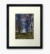 Daffs and Trees  Framed Print