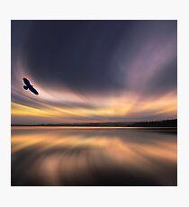 Golden Eagle Dawn by David Alexander Elder Photographic Print