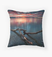 Kaimai Red Delight Throw Pillow