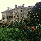 Looking Over Rose Bushes from the Cliff Walk at the Breakers by Jane Neill-Hancock