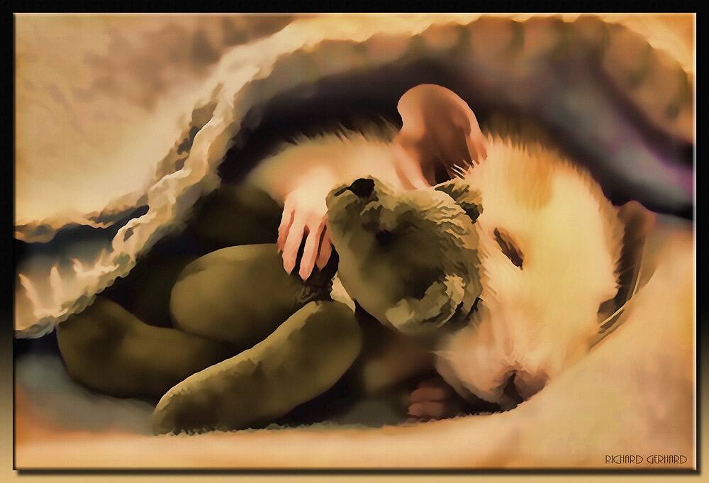 Sleepy Time in Oil by Richard  Gerhard