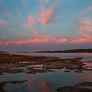 Pink Morning - Murchison River - Kalbarri  by John Pitman