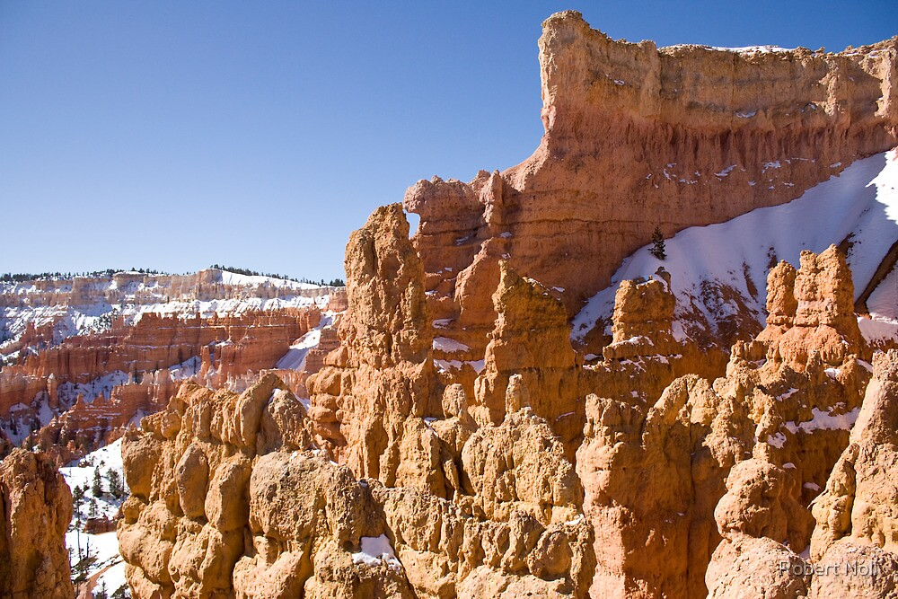 Hoodoos in Bryce Canyon by Robert Noll
