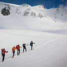 Mount Rainier Snowshoers by Inge Johnsson