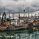Portavogie Fishing Boats 02 by peter donnan