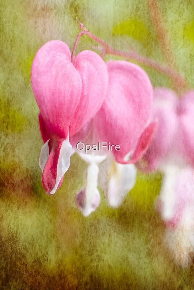 Bleeding Heart by OpalFire