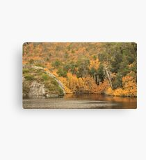 Crater lake fagus 2# Canvas Print