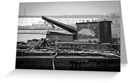 Crane by Mark Fendrick