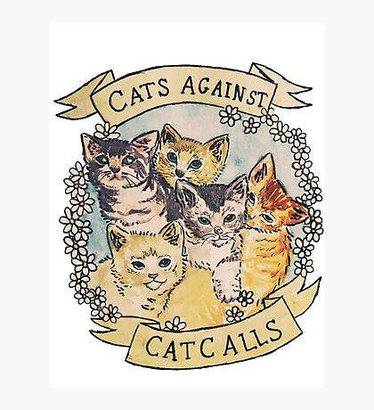 Cats Against Cat Calls Photographic Print
