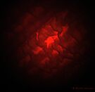 Seeing red by Photos - Pauline Wherrell