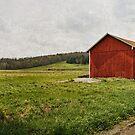 Farmlands by Sally Kady