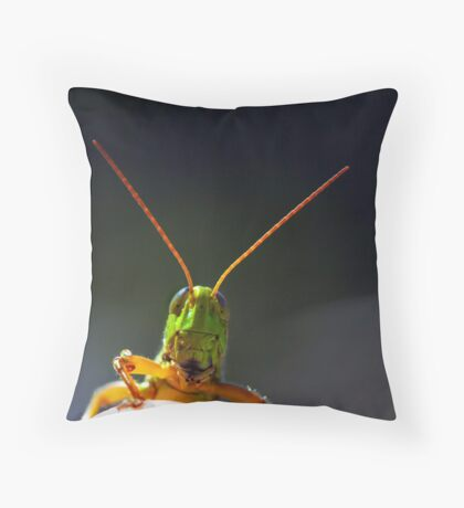 """""""Hello To All Of My Friends In RedBubble Land ! """" Throw Pillow"""
