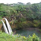 Hawaiian Falls by MaureenS