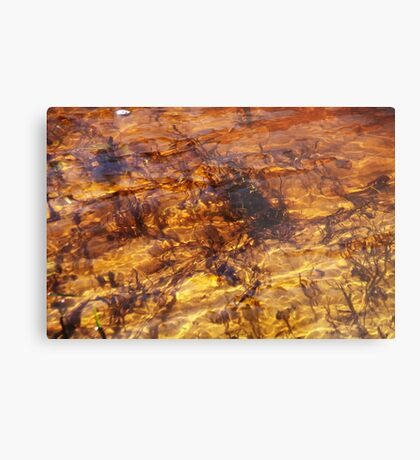 My old river. II Metal Print