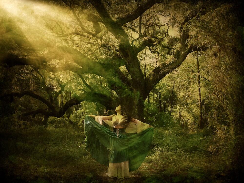 Caressing Light by KatarinaSilva