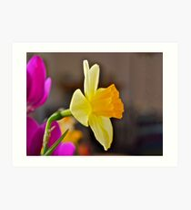 Daffodil Paintography Art Print
